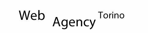 Web Agency Torino